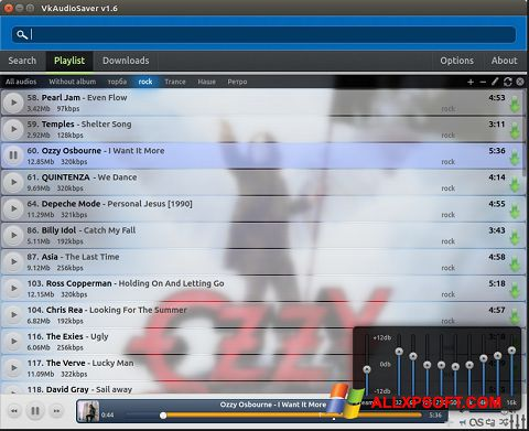 Ekrānuzņēmums VkAudioSaver Windows XP
