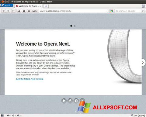 Ekrānuzņēmums Opera Developer Windows XP